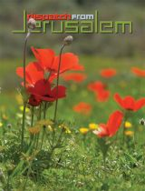 Dispatch from Jerusalem · June 2012 · Vol. 37 No. 3